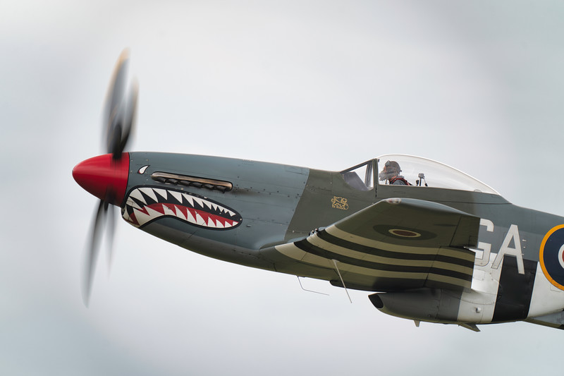 "North American P-51D Mustang (G-SHWN) ""The Shark"" Flying legends Airshow 2019   By David Stoddart"