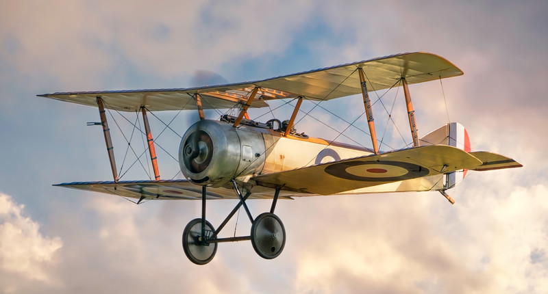 Sopwith Pup 9917 By David Stoddart