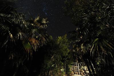 Orion's Belt - Night Sky Little Cayman, Cayman Islands.