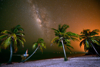 Milky Way - Palm Trees and Stars, Little Cayman, Cayman Islands.