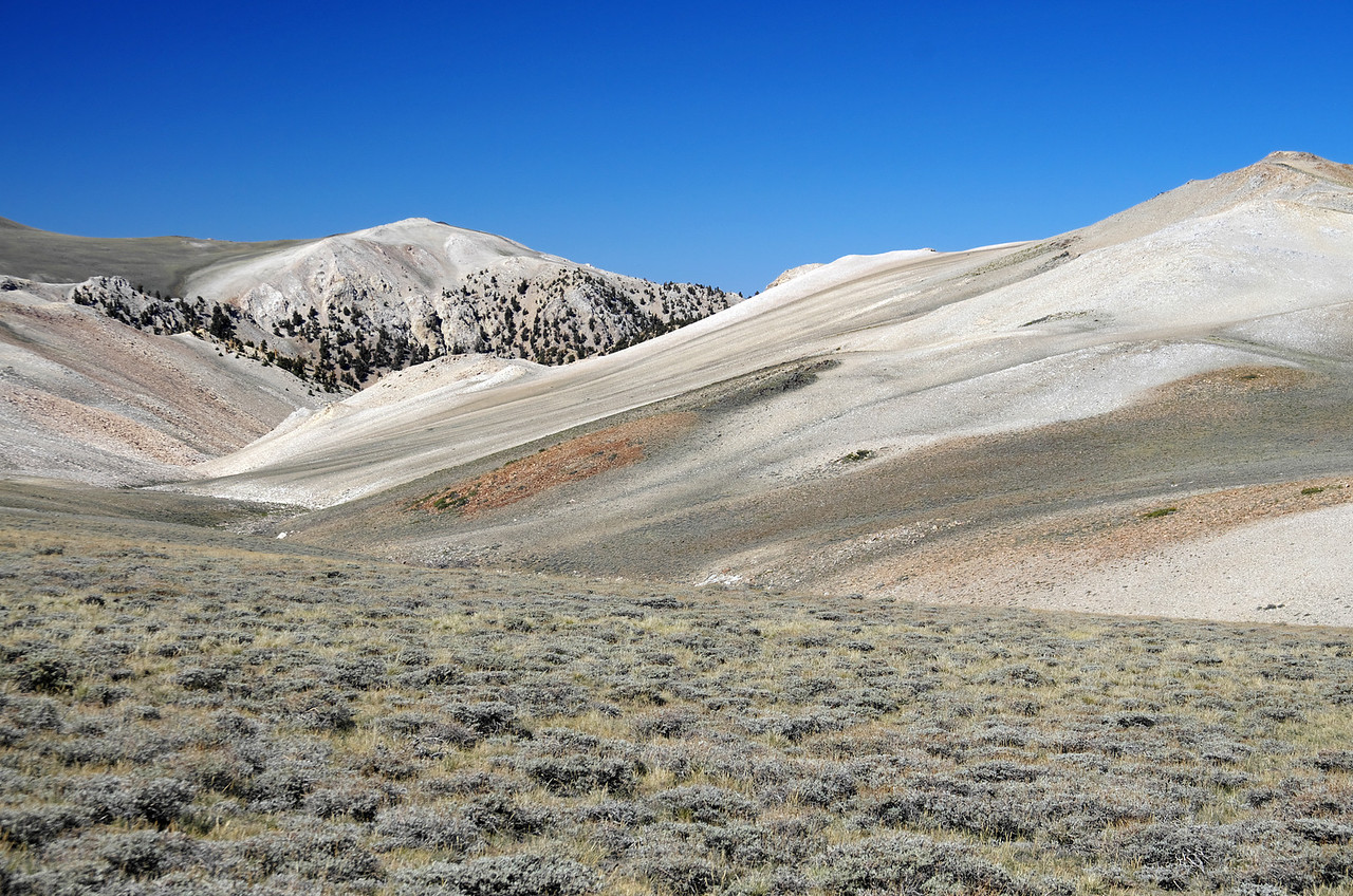 Looking NNE along White Mountain Road just NE of Piute Mtn.