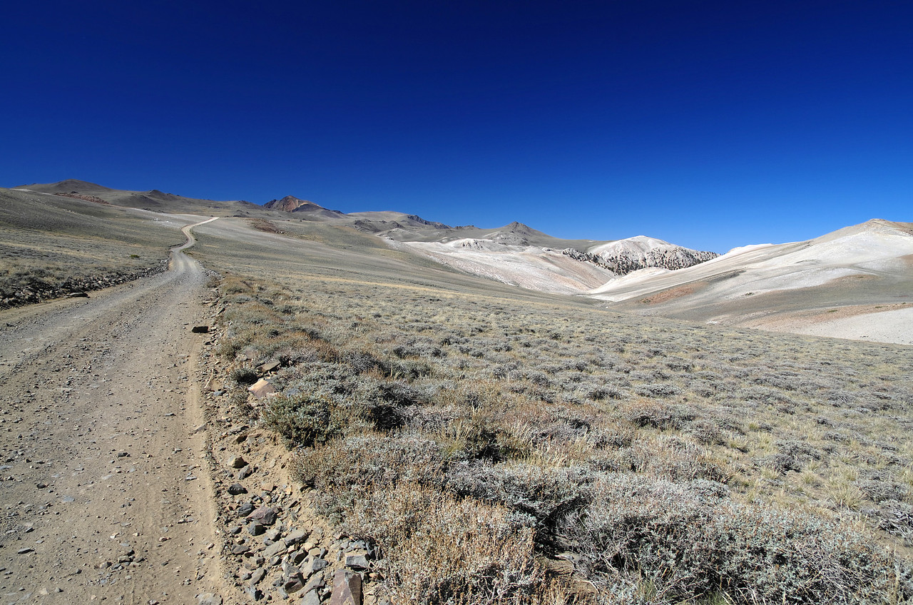 Looking north along White Mountain Road just NE of Piute Mtn.