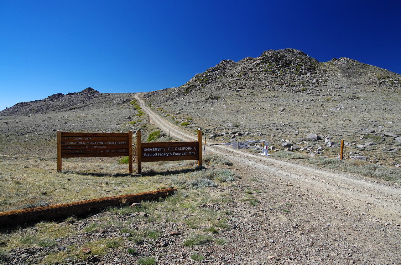 White Mountain Road—Where the public road via autos ends and foot travel begins.