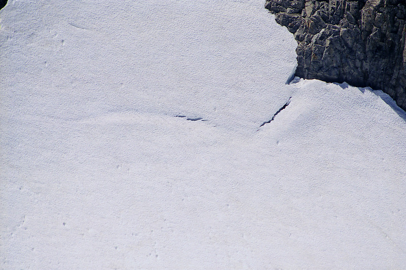 A Cravase up agaist Mt Ritter on the Glacier between Ritter and Banner