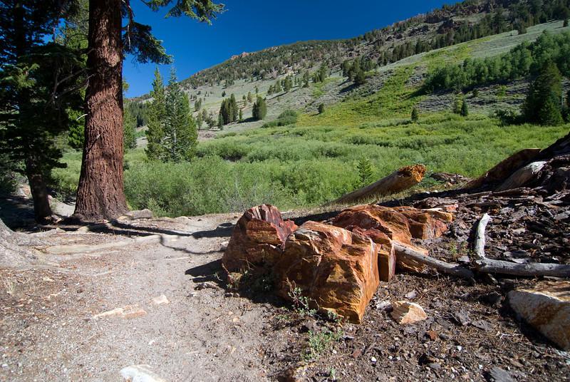 High Trail pic2