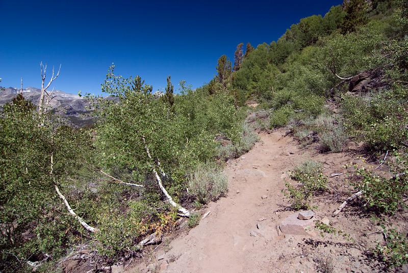 High Trail pic4