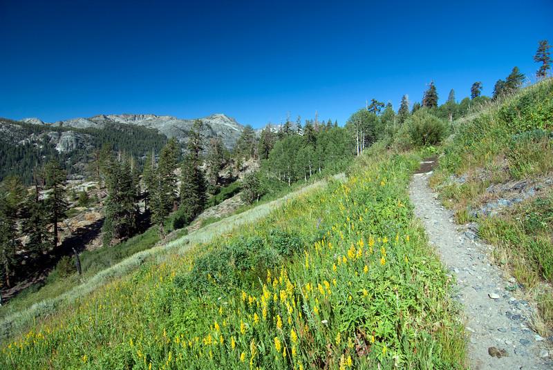 High Trail pic1
