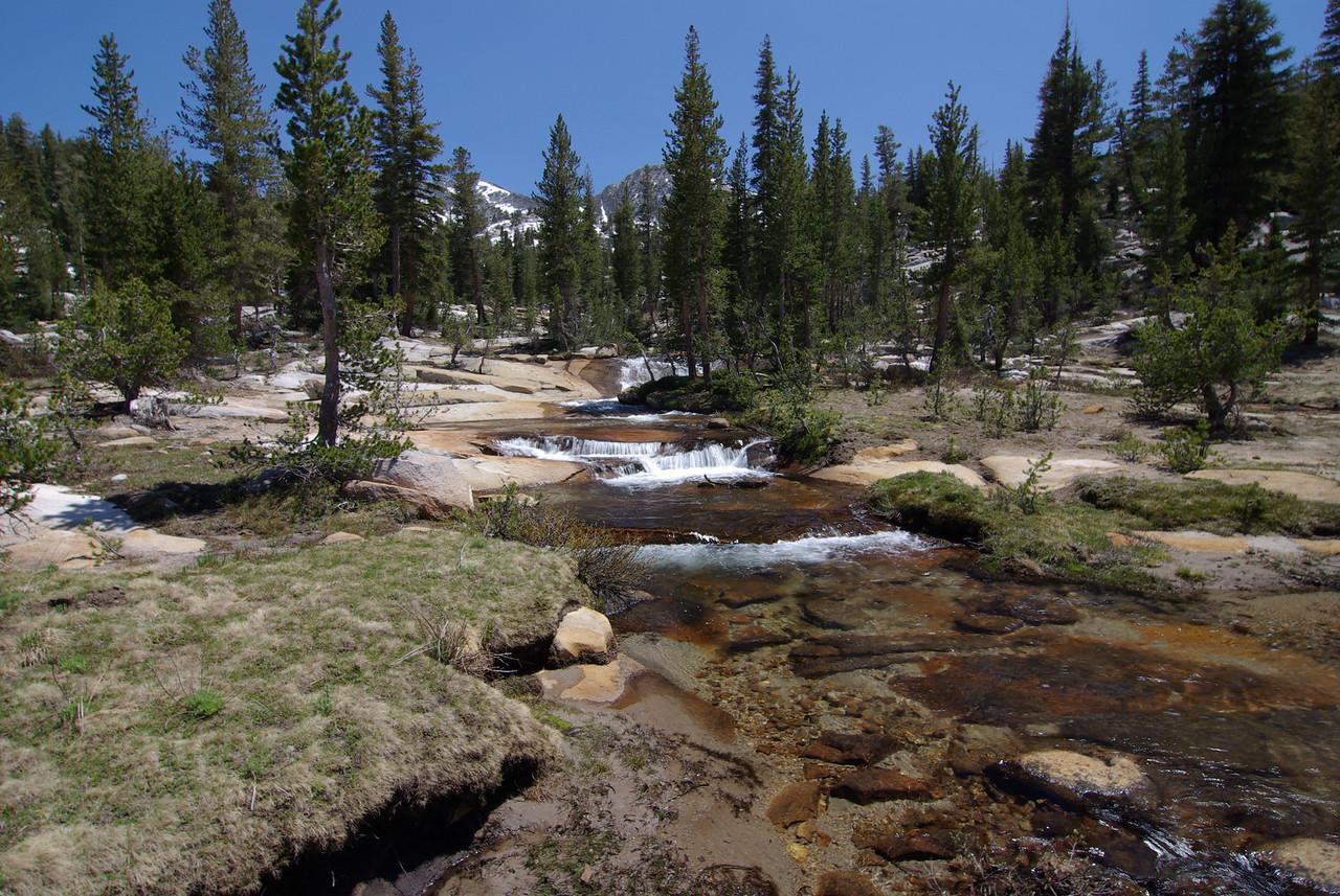 Fern Creek above Coyote Lake