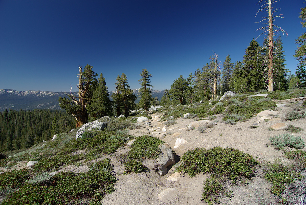 The Arch Rock Trail 9100ft