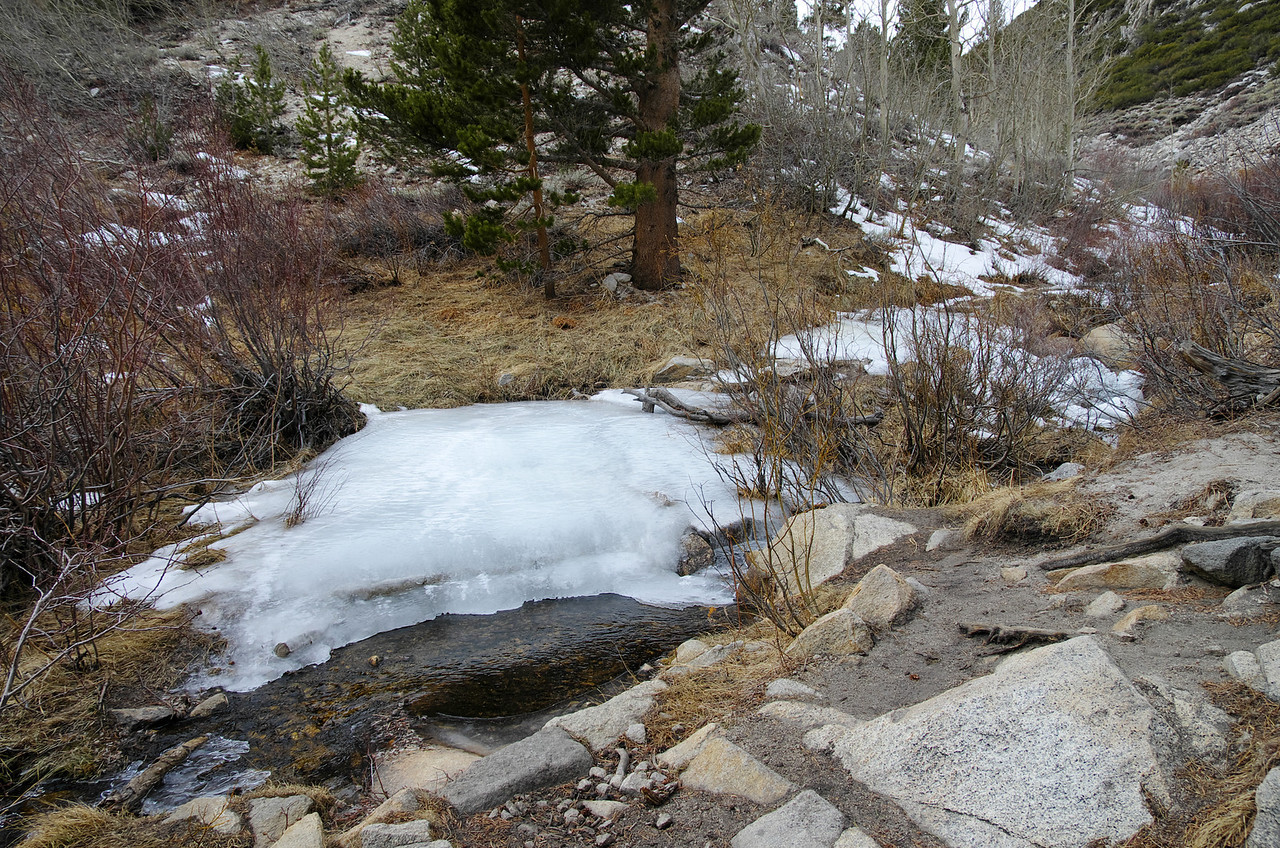 Free-flowing water turns to ice at night when it's not freezing in the day.
