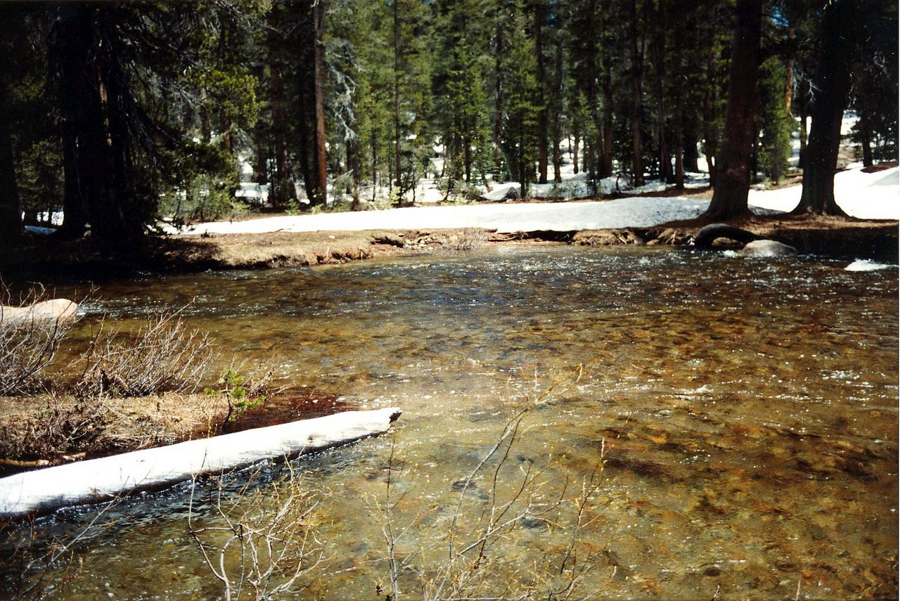 This was probably one of my most dangerous acts in all of my years of Hiking.  I remember sitting on the snowcovered banks of the East fork of Granite Creek taking my shoes off and rolling my snow pants up to cross the ice cold water which was somewhere between my knee and mid-thigh.  Thank God their was no warm weather to make this crosing any worse or more dangerous than it was.  Despite all of the crap I've had to put up with in life, I seriously think that there's a rotation of angels up there that watch over me when I do this dangerous stuff because anyone else would have had a bad accident if they did this stuff as often and as extreme as I've done it over the years.