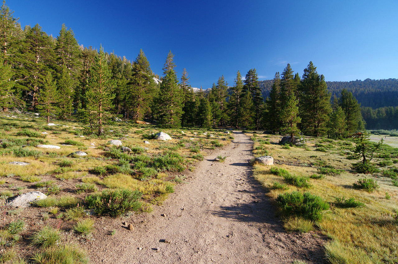 The Trail near the Cabins.