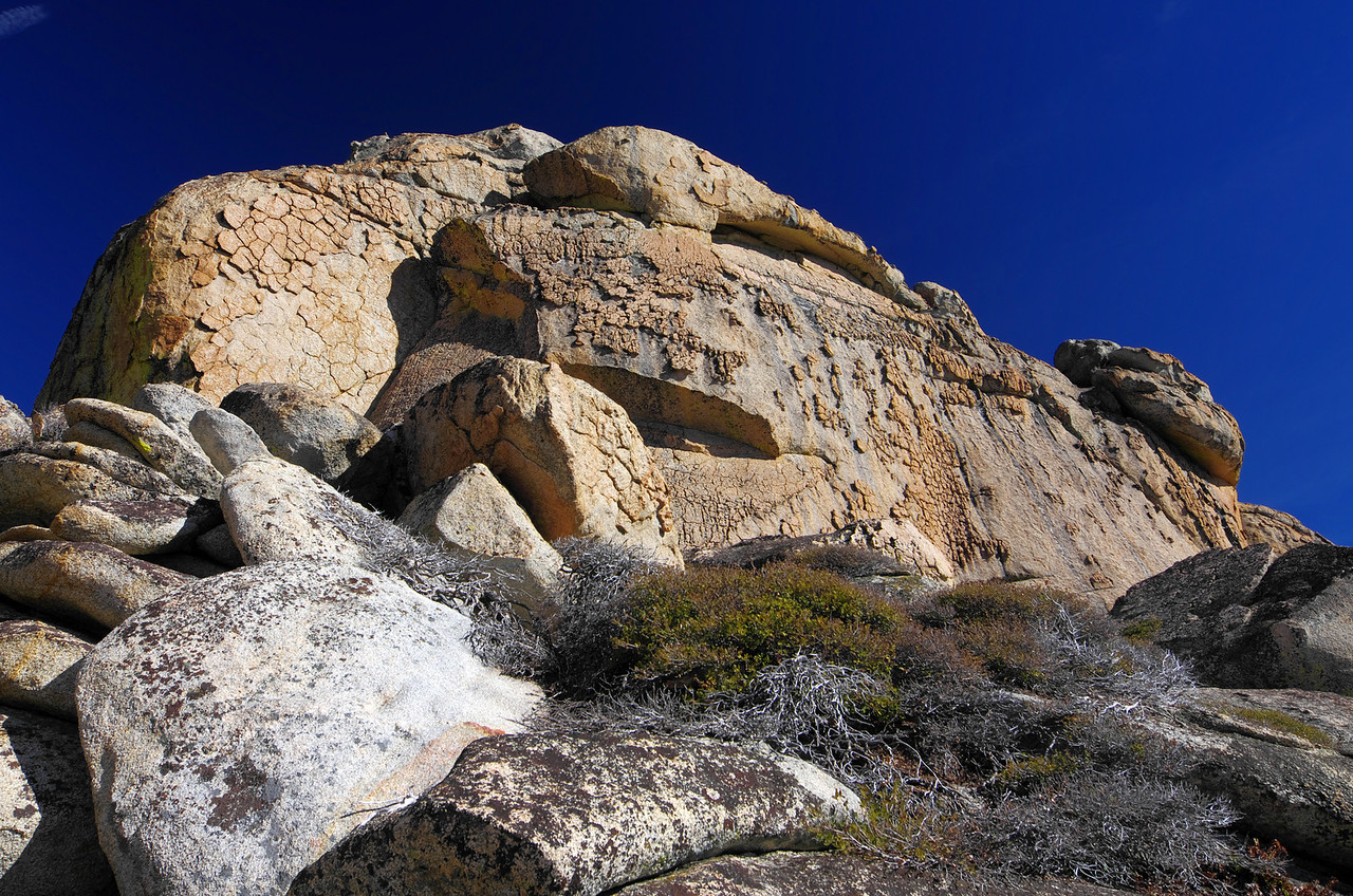 Chickenheads abundantly cover the Granite rock in and around the Eagle Beak Peaks.
