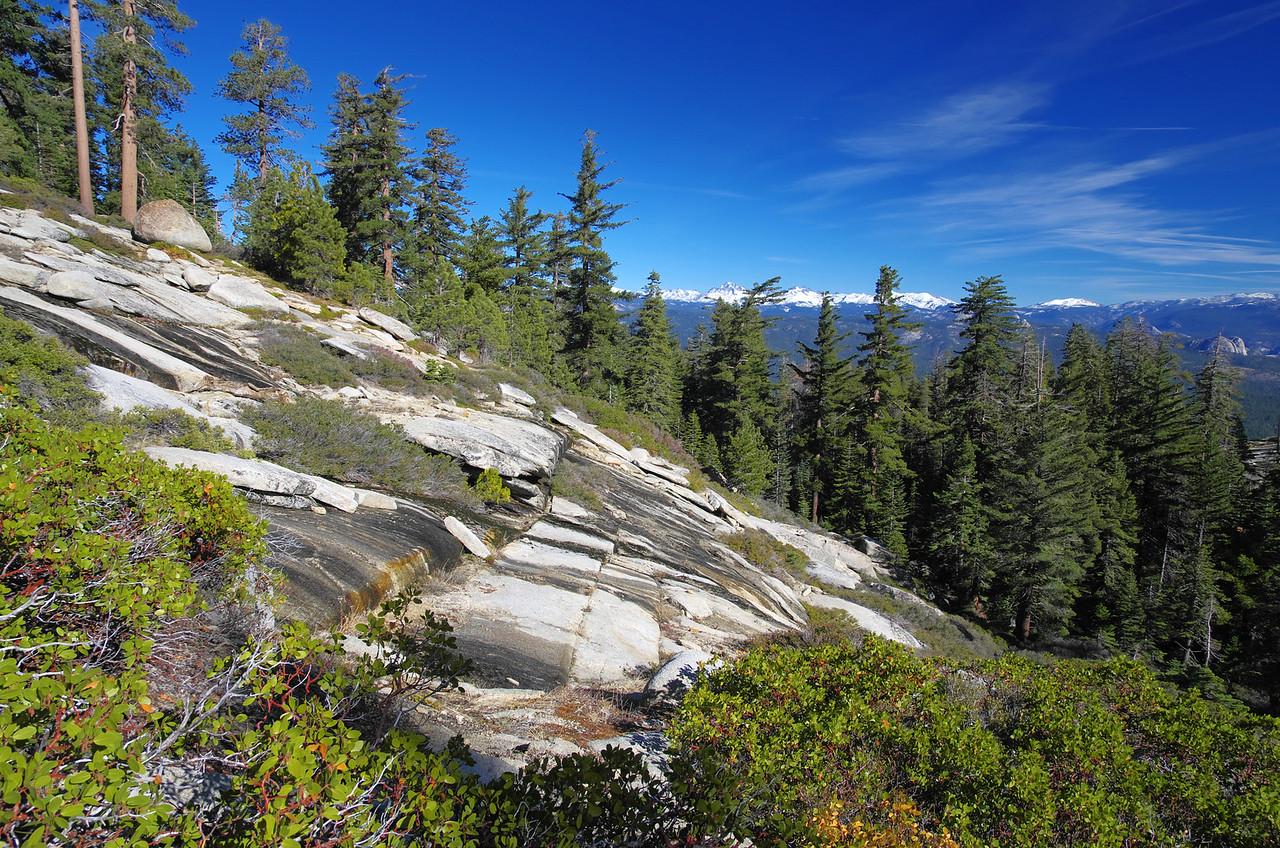 The Shuteye Pass Trail east of the pass around 6,950ft.
