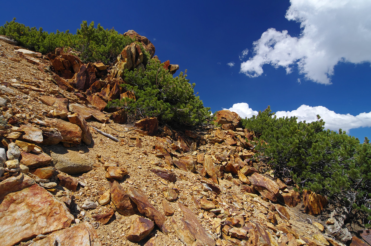 Some foreshadowing orange/redish rocks that make-up the top of Red Mtn.