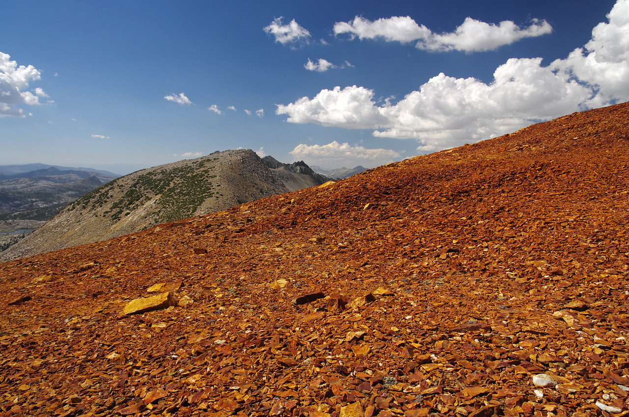 The SW slope of Red Mtn.