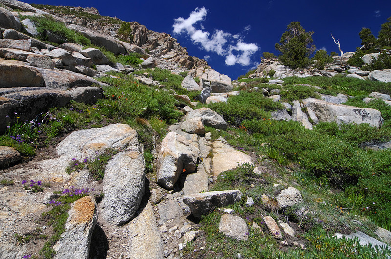 As you near the pass, the landscape changes to more of a rocky-trend.