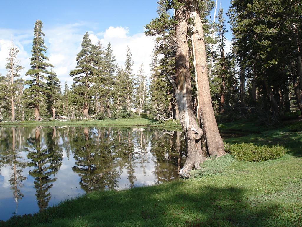 Island Lake pic5