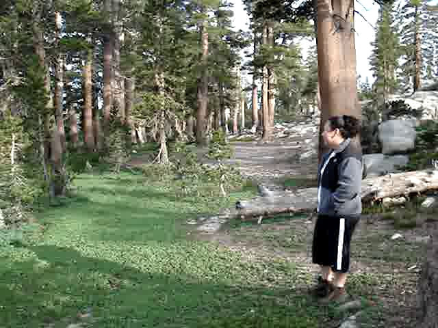 Video of Island Lake