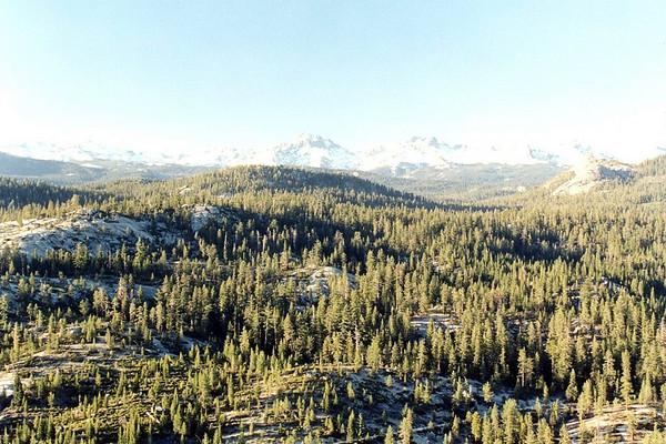 Jackass Rock Ascent I, June 2000