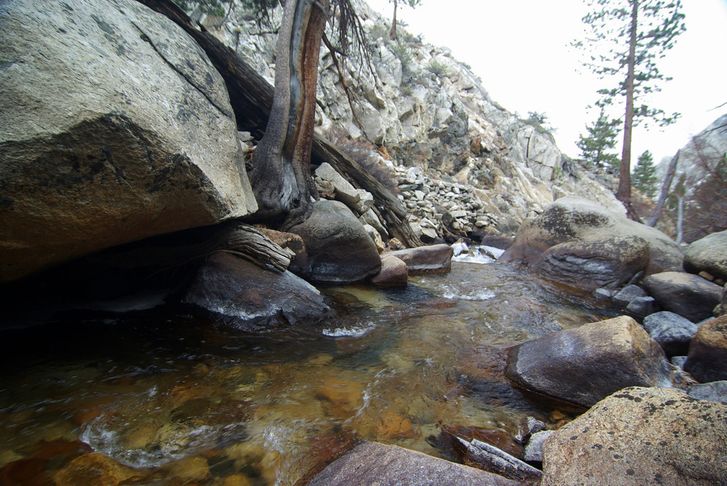 The North fork of Big Creek above the Second Falls