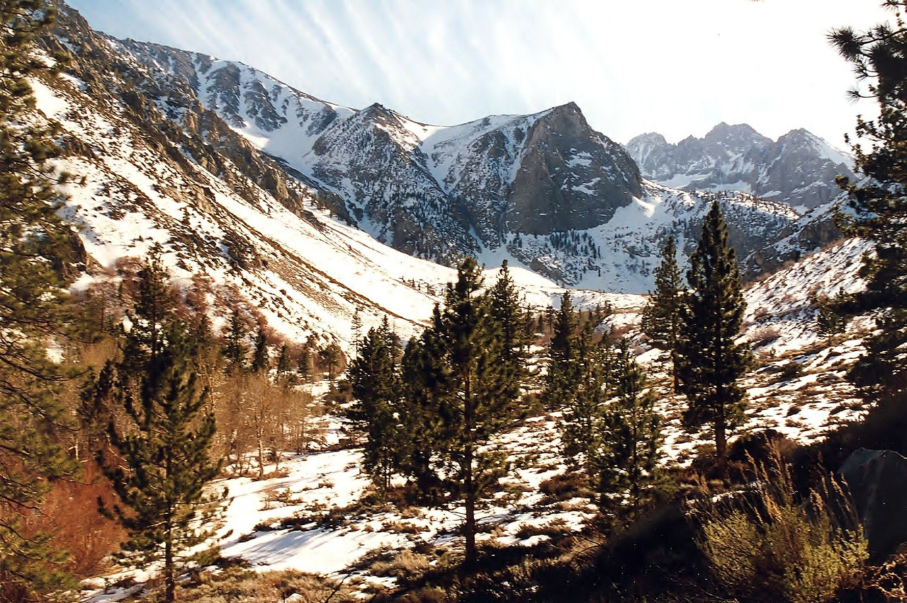 Looking South at the Southern fork of Big Pine Creek