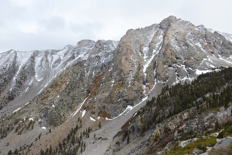 Mt Williamson is MASSIVE!