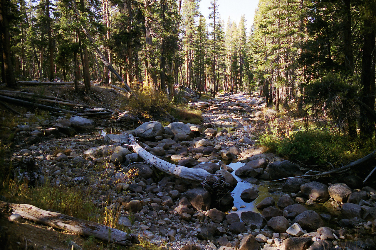 The Kings River near the crossing of the North fork of the Kings River and the Blackcap Basin Trail around 9,130ft
