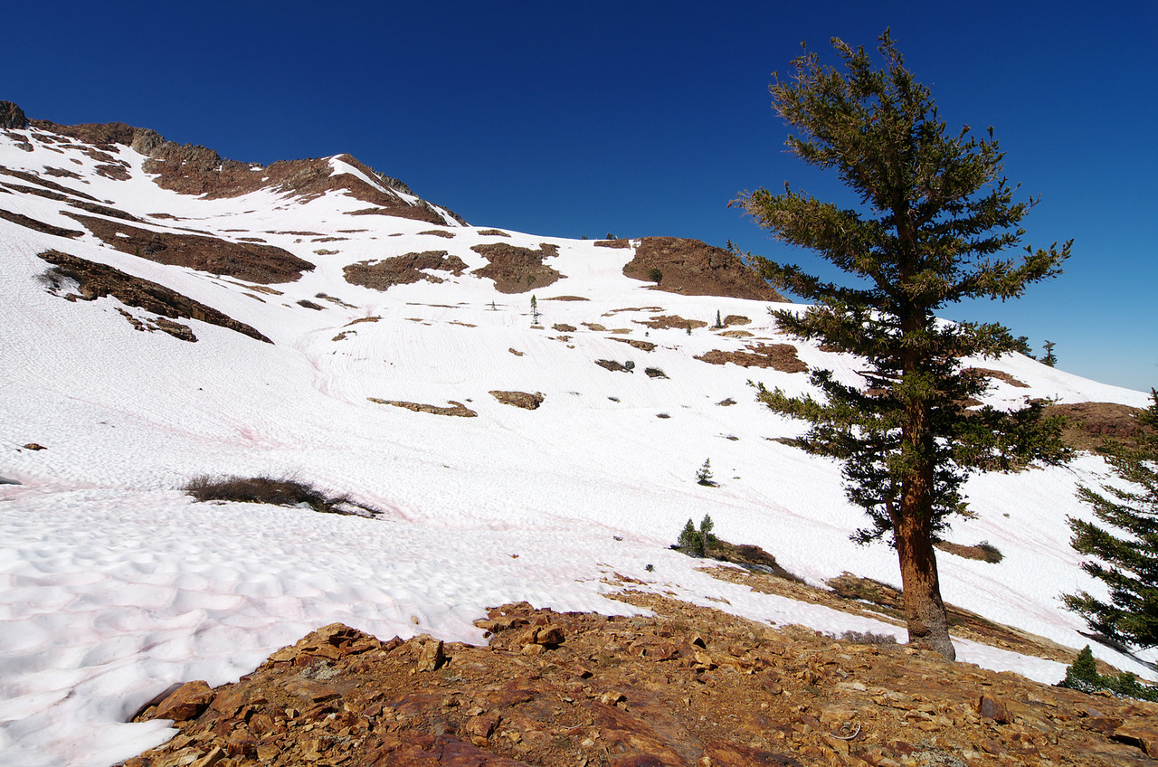Safely across the upper Monarch Creek and to the Monarch Lake.  Looking West around 10,400ft.