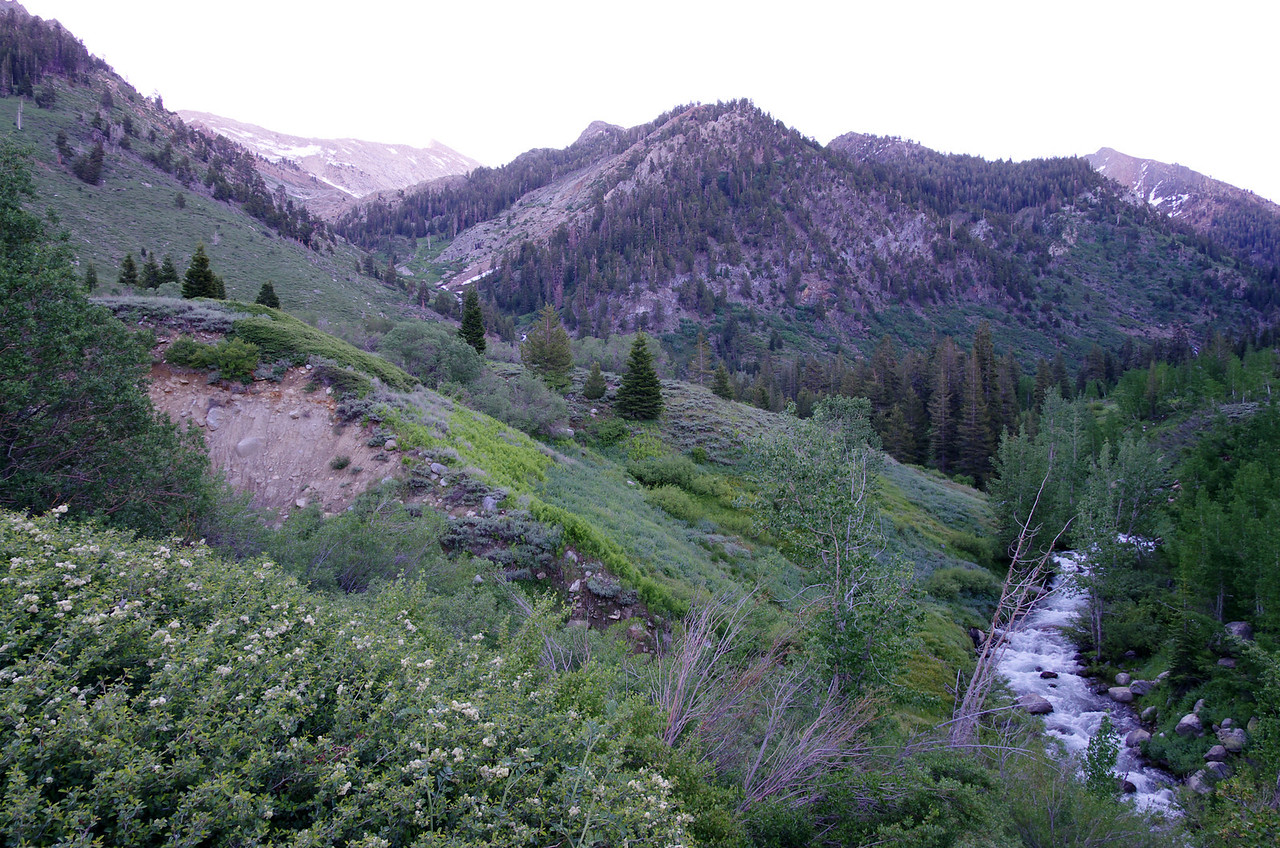 Mineral King & the East fork of the Kaweah River.