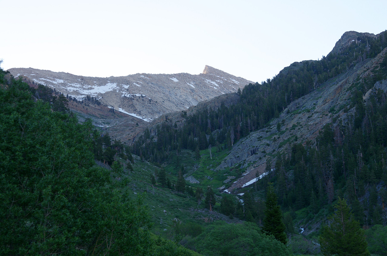 Looking back towards Sawtooth Peak from Mineral King about a 1/4 of a mile from the Sawtooth Trailhead.
