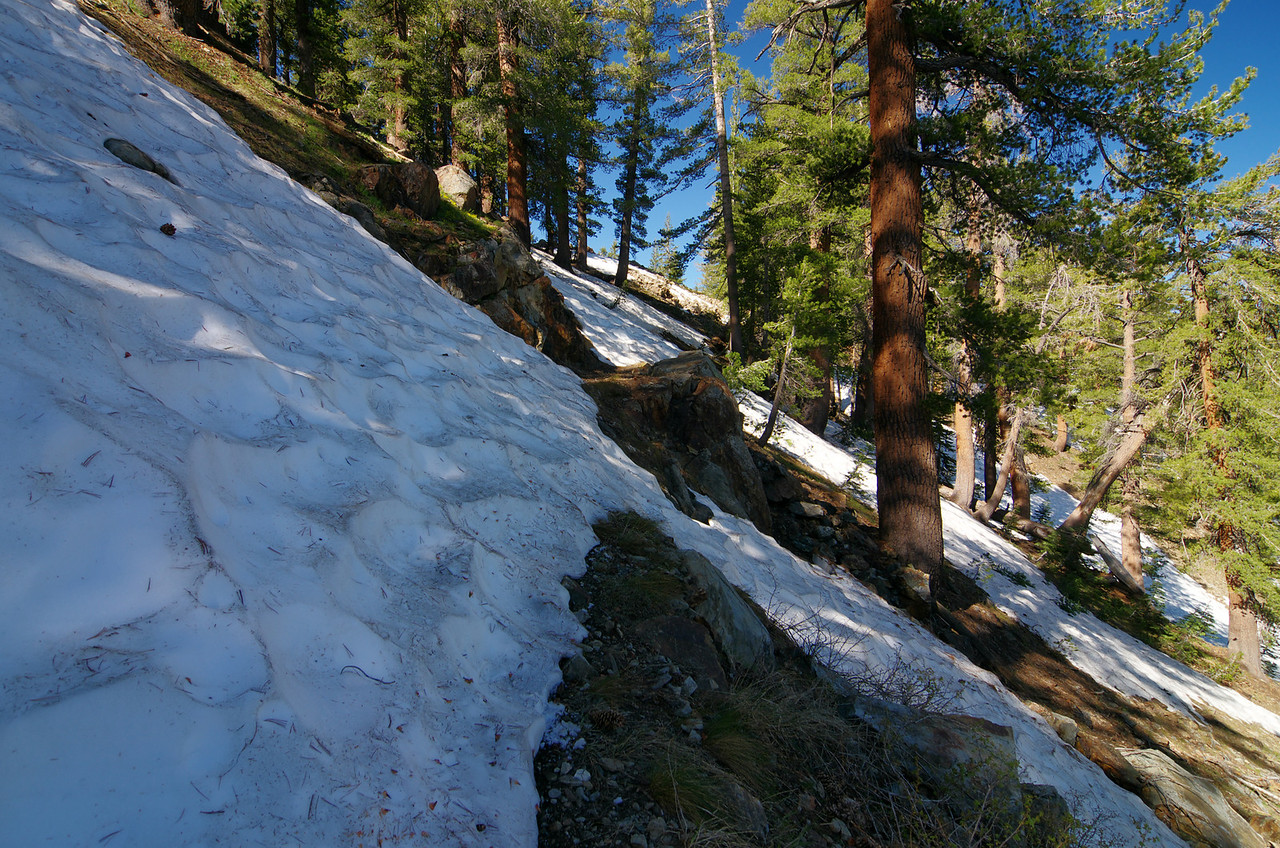 Snow starts to cover more of the trail--about 10,050ft.