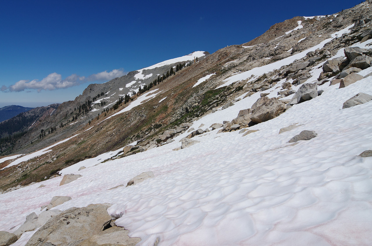 Ya, I like the snow and prefer it over Boulders or the traditional Sandy terrain that Sawtooth is normally comprised of.