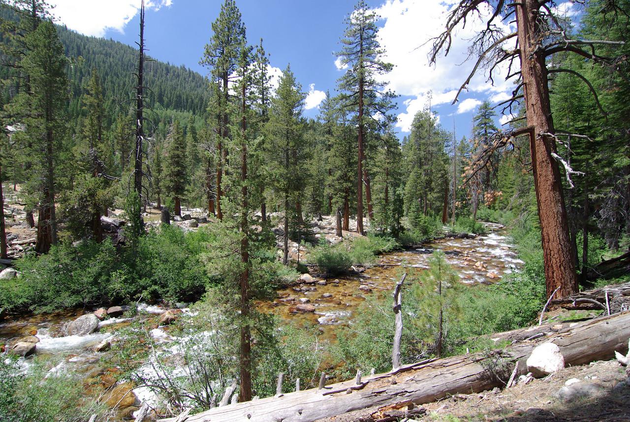 Mono Creek 8,000 ft