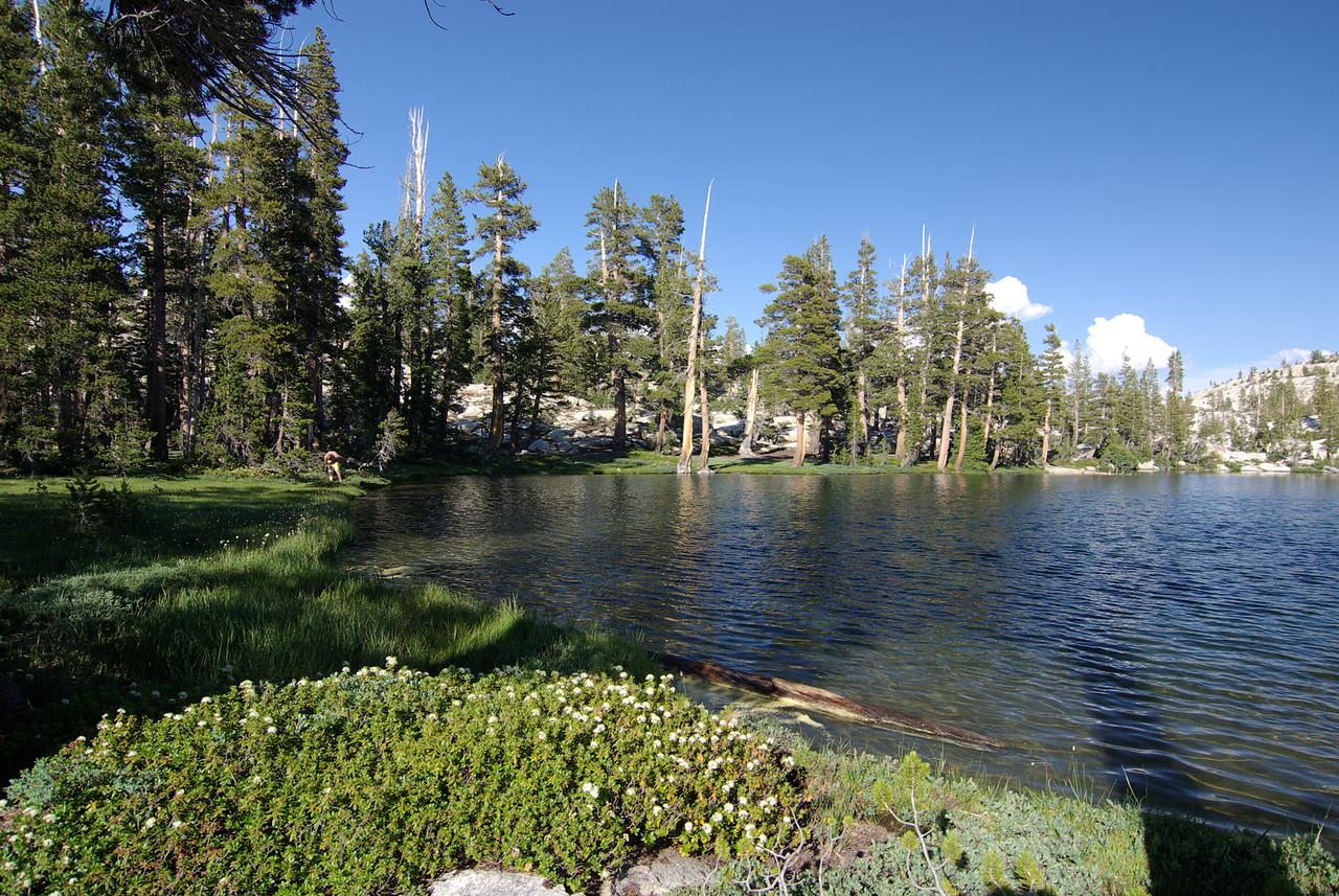 Island Lake pic4