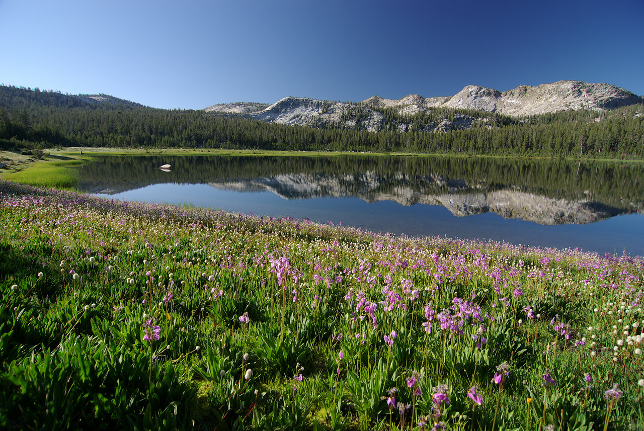 The 1st Dinkey Lake pic3