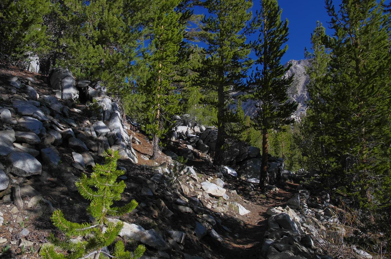 The NF Big Pine trail near the Fourth Lake.