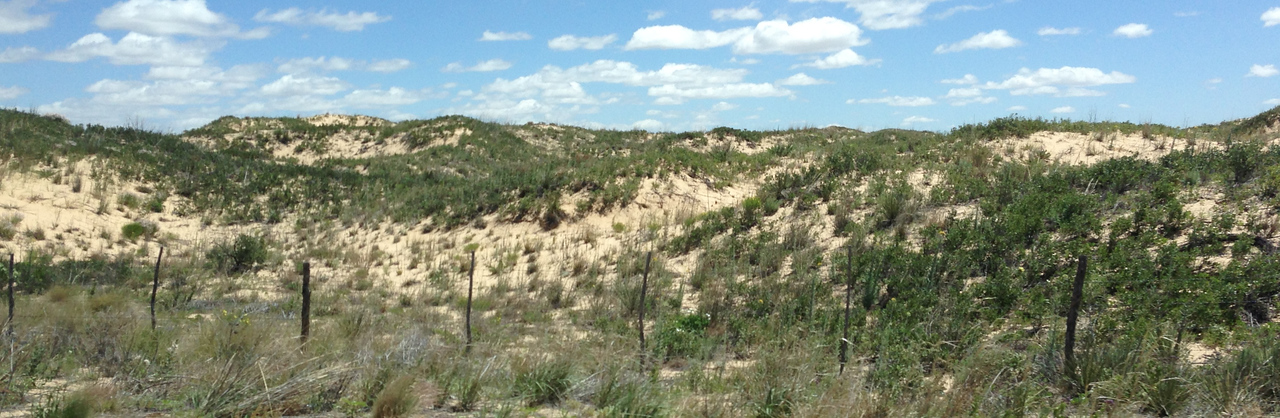 100 miles of sand hills in Texas panhandle