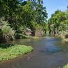 Putah Creek - Russell Ranch - Kinsella Road