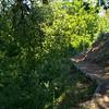 Putah Creek Levee Road Picnic Area
