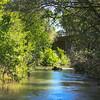 Putah Creek - South Fork Reserve at Mace Blvd