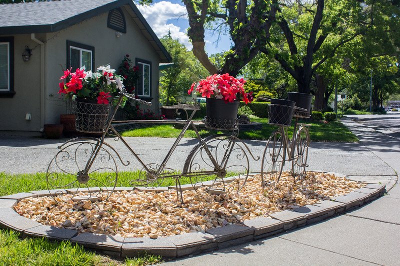 Untitled (Two flowery bikes)