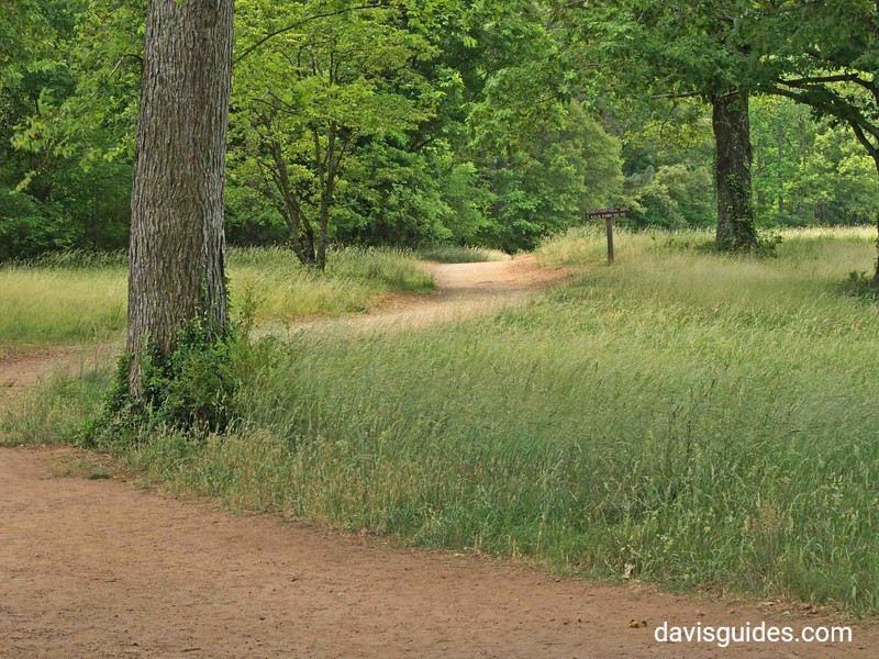 Trail meandering north from Cheatham Hill area, Kennesaw Mountain National Battlefield Park