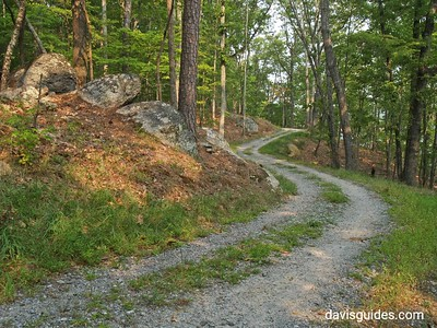 Old road is now the Iron Hill Trail, Red Top Mountain State Park