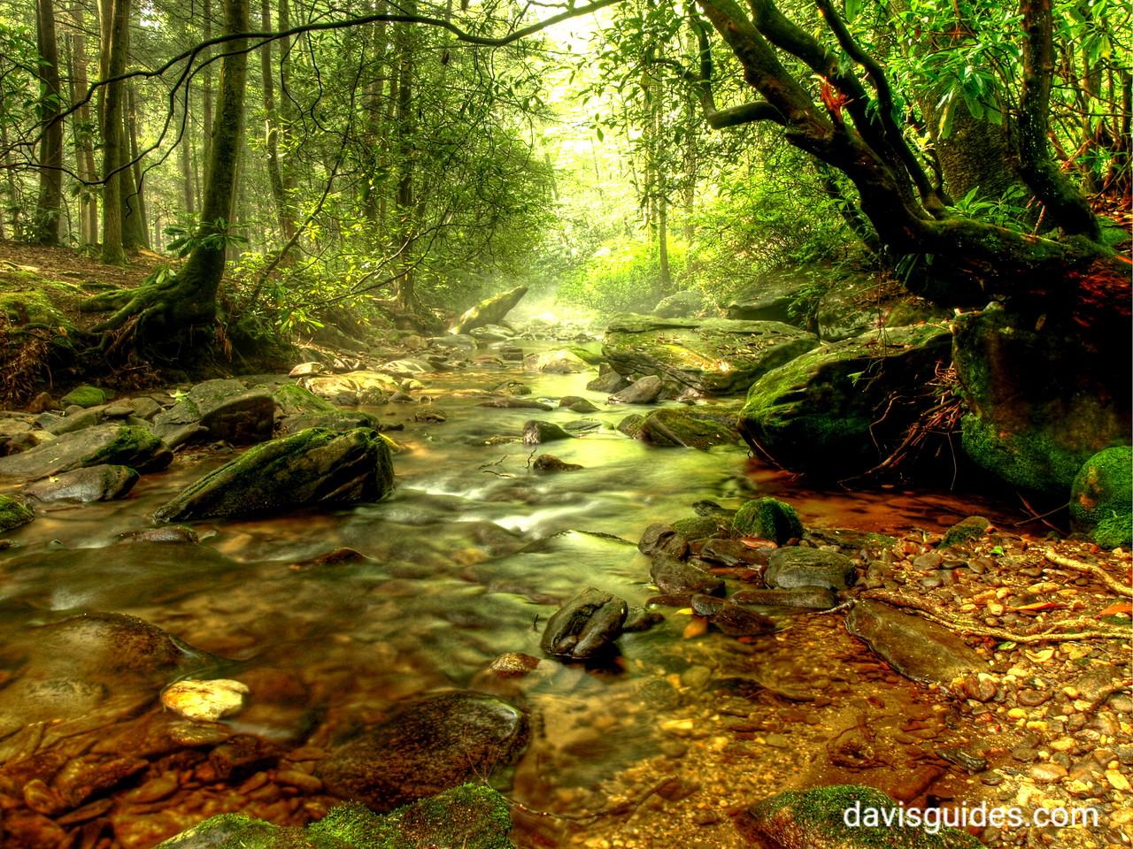 Frogtown Creek, DeSoto Falls Recreation Area