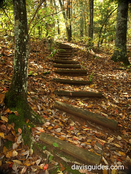 Tennessee Rock Trail at Black Rock Mountain State Park
