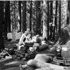 Breakfast at Ohanapecosh Springs Campground, Mount Rainier National Park, 1941