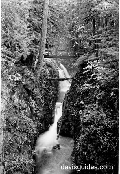 Bridge over Sol Duc River falls, Olympic National Park, 1938
