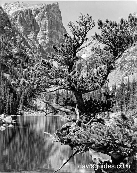 Lake beneath Hallett Peak, Rocky Mountain National Park, 1938