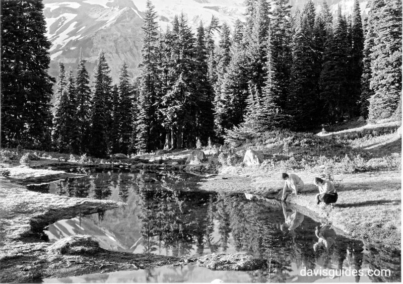 Fairy Pool at Paradise Valley, Mount Rainier National Park, 1932